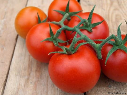 Propiedades del tomate y beneficios para la salud