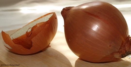 Propiedades de la cebolla y sus beneficios