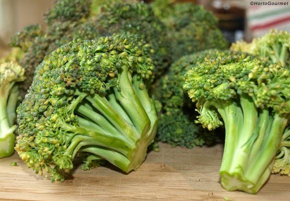 Propiedades del brócoli y sus beneficios