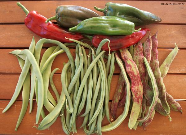 Precios mensuales de hortalizas de Almería