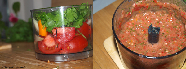 ingredientes_salsa_mexicana_triturador1