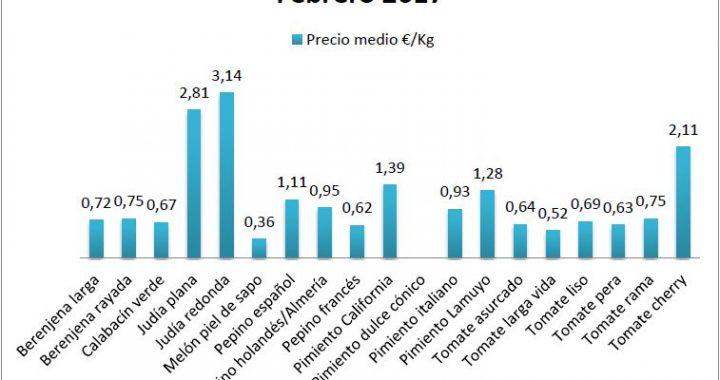 Precios en origen de hortalizas en febrero 2017