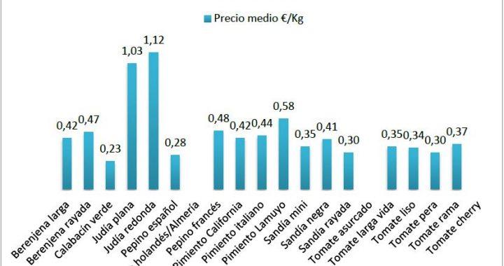 Precios en origen de hortalizas en junio 17