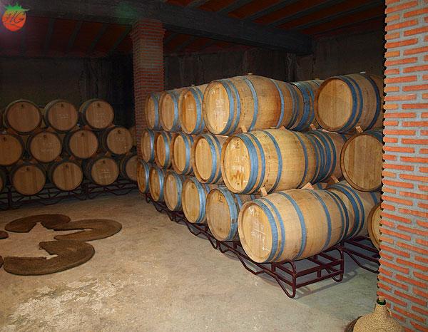 Los vinos de Cepa Bosquet