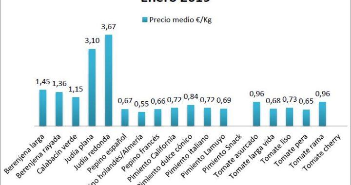 Precios en origen de hortalizas enero 19